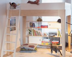 bunk beds adelaide_Perch Double Loft Bed_out of the cot_3